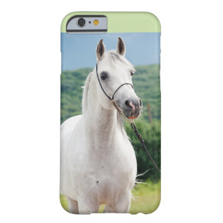 horse collection. arabian white barely there iPhone 6 case