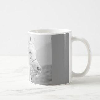 horse collection. arabian white coffee mug