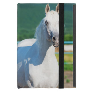 horse collection. arabian white iPad mini cover
