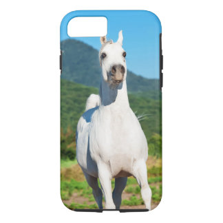 horse collection. arabian white iPhone 8/7 case