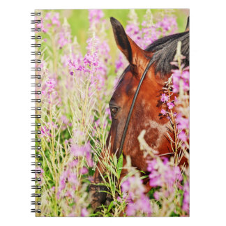 horse collection. spring spiral note book