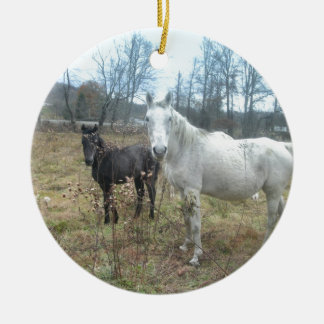 Horse & Colt Round Ceramic Ornament
