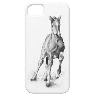 Horse, Colt Running: Pencil Art, Equine iPhone 5 Case