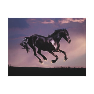 Horse dance at sunset canvas prints