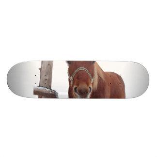 Horse deer - christmas horse - funny horse skateboard deck