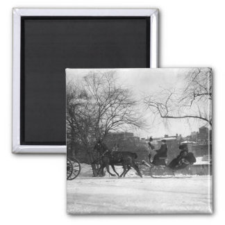Horse Drawn Sleigh NYC Magnet