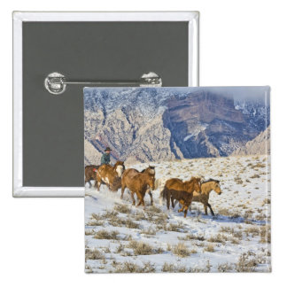 Horse Drive Through the Snow 2 Inch Square Button