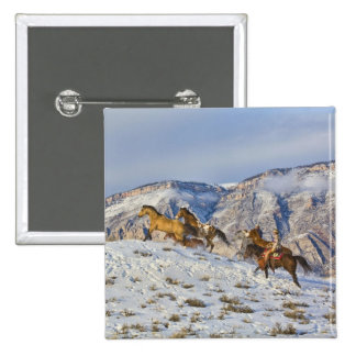 Horse Drive Through the Snow 3 2 Inch Square Button