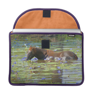 "Horse eating in the lake, Australia, 13"" Photo MacBook Pro Sleeves"