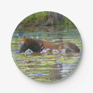 """Horse eating in the lake, Australia, 7"""" Photo 7 Inch Paper Plate"""