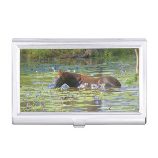 Horse eating in the lake, Australia, Photo Business Card Holder