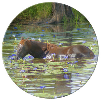 Horse eating in the lake, Australia, Porcelain Porcelain Plate