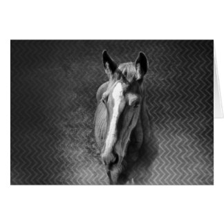 Horse emerging from mist horizontal card