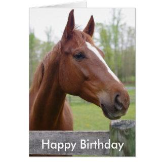 Horse Equestrian Hunter Birthday Card