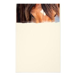 Horse Eyes Stationery
