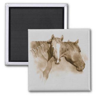 HORSE, FOAL: SEPIA: PENCIL ART REFRIGERATOR MAGNET