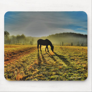 Horse Grazing at Sunrise in Misty Field Photo Mouse Pad