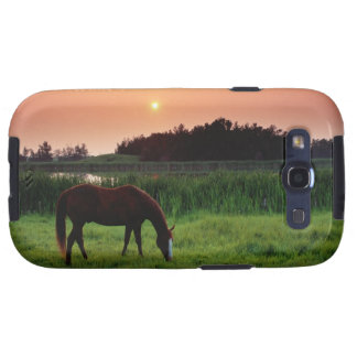 Horse Grazing in Field at Sunset Near Edmonton, Galaxy SIII Case