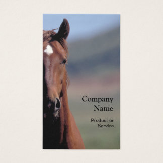 Horse head business card