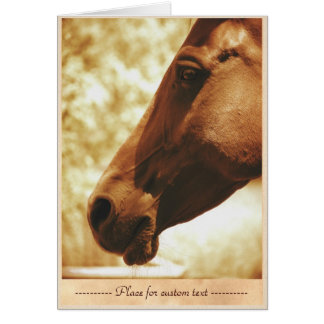 Horse Head in Warm Tones animal photo portrait Stationery Note Card