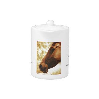 Horse Head in Warm Tones animal photo portrait