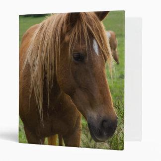 Horse Hello Binder