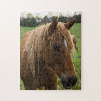 Horse Hello Jigsaw Puzzle
