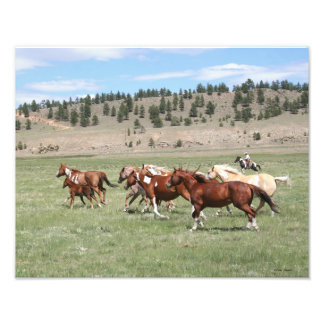 Horse Herd and Cowboy Photographic Print
