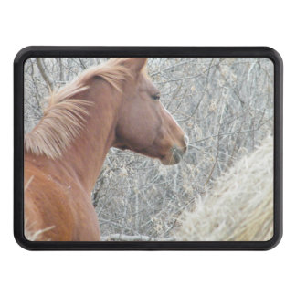 Horse Hitch Trailer Hitch Cover