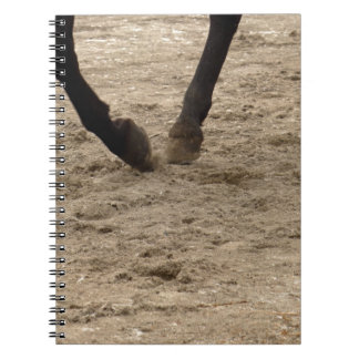 Horse hooves notebook