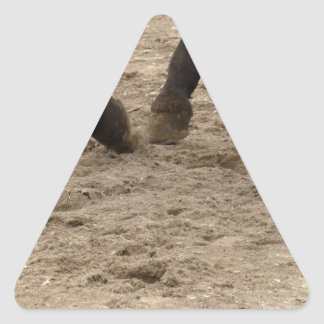 Horse hooves triangle sticker
