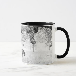 Horse In Foggy Field Of Oaks Mug