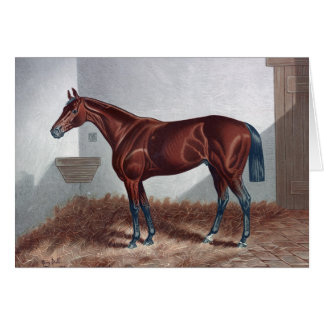 Horse in His Stall, Card