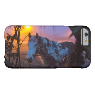 Horse in Irish Fog Barely There iPhone 6 Case