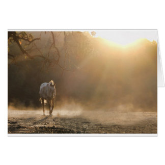 Horse in Light Equine Sympathy Card