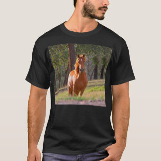 horse in pasture T-Shirt