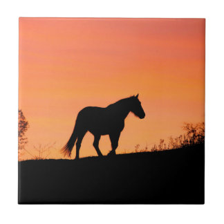 Horse in Southwestern Sunrise Tile