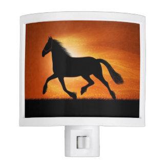 Horse in sunset nite light