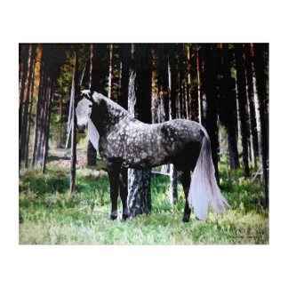 """""""Horse In The Forest"""" Panel Wall Art"""