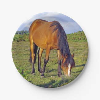 horse in the meadow plate 7 inch paper plate