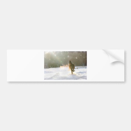Horse in the snow bumper sticker