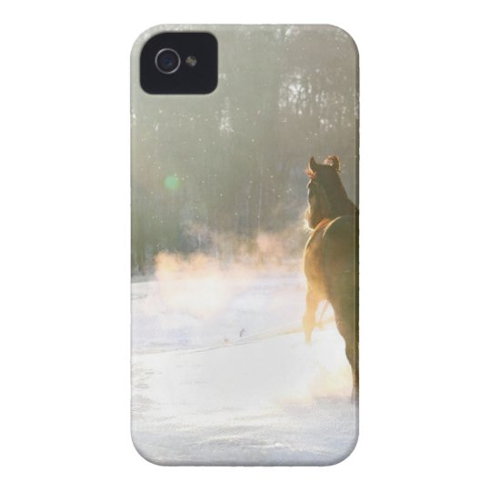 Horse in the snow Case-Mate iPhone 4 cases