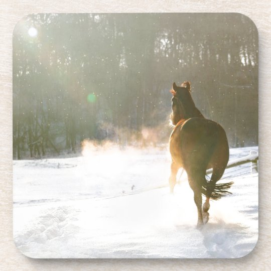 Horse in the snow coaster