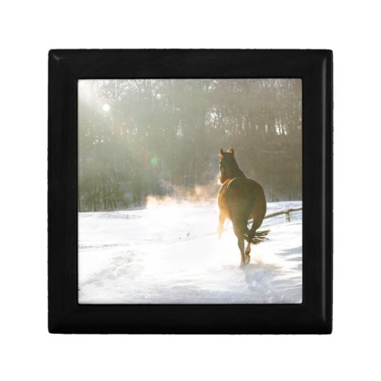 Horse in the snow gift box