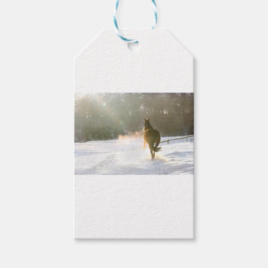 Horse in the snow gift tags