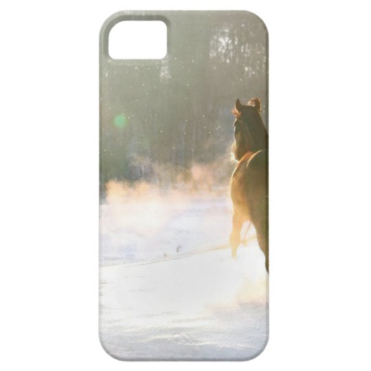 Horse in the snow iPhone 5 cover