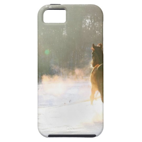 Horse in the snow iPhone 5 covers
