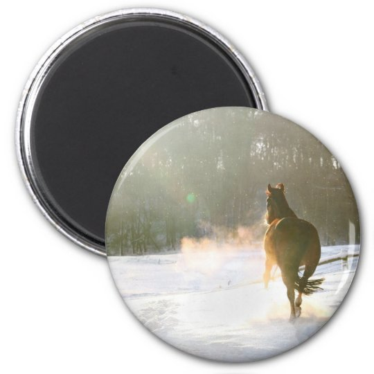 Horse in the snow magnet