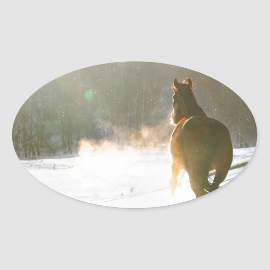 Horse in the snow oval sticker