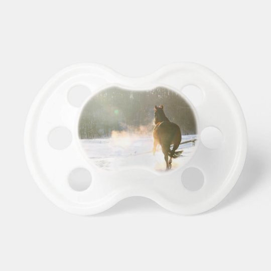 Horse in the snow pacifier